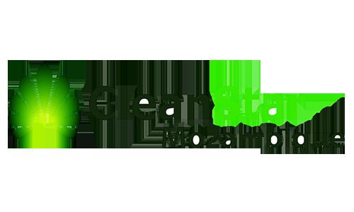 Cleanstar Mozambique อาหารและพลังงานในครัวเรือนที่สะอาดและปกป้องผืนป่า
